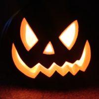 pumpkin-pest-control